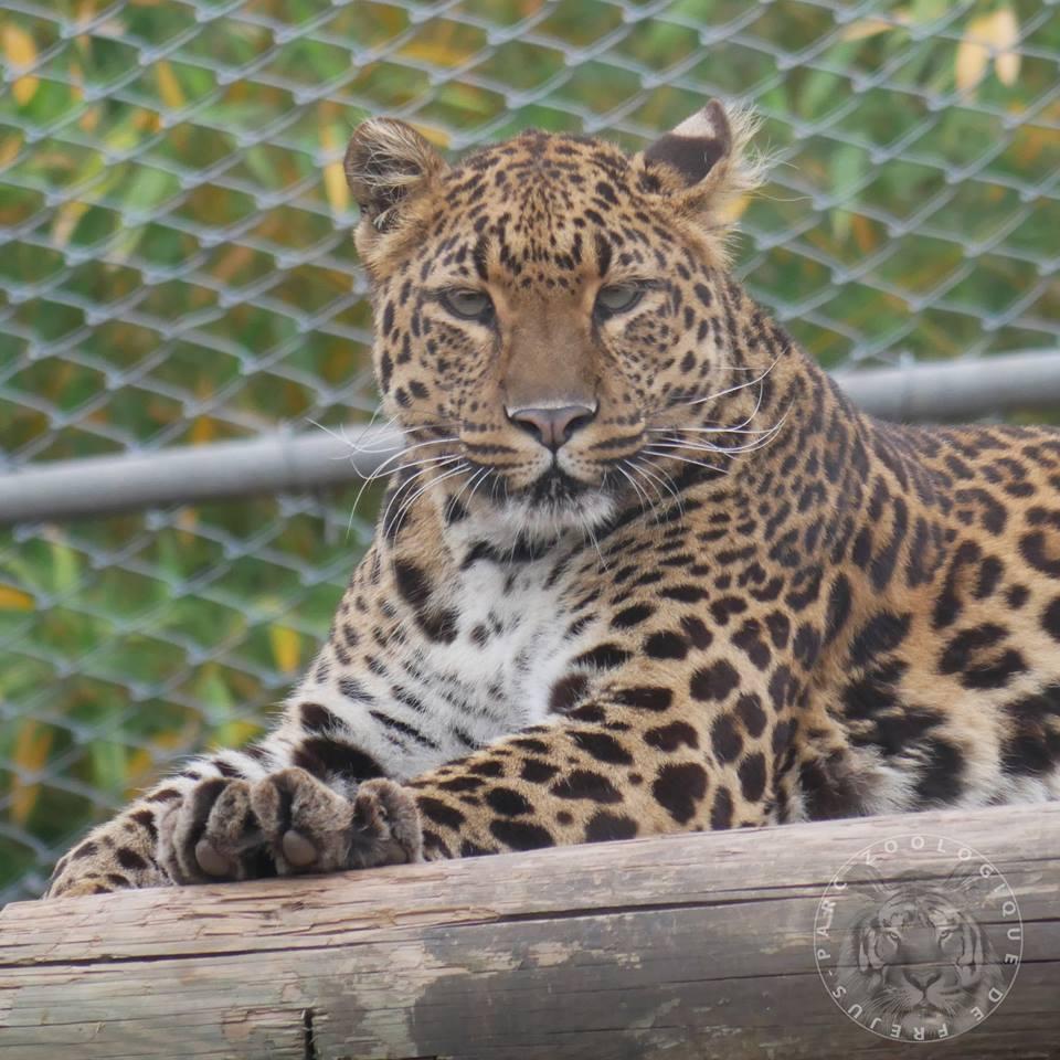 Le Parc Zoologique de Fréjus