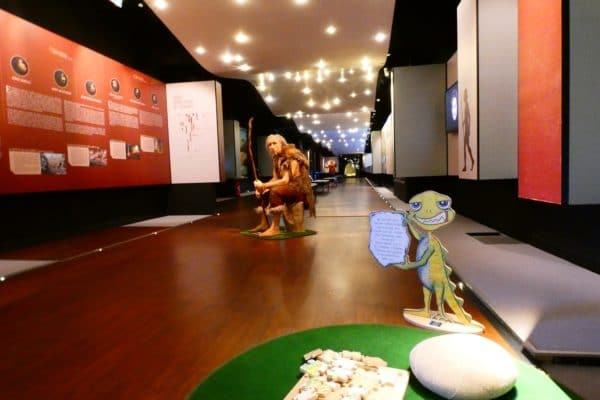 Galerie permanente du Musée des Merveilles