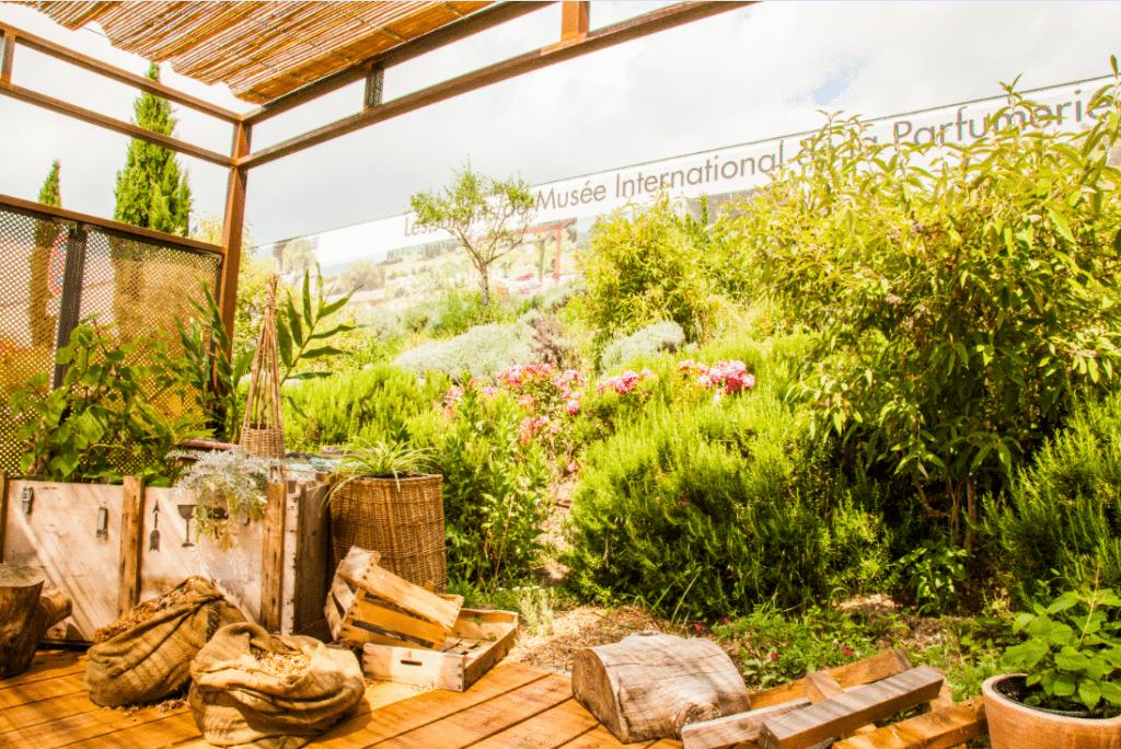 Espace naturel olfactif : Jardin du MIP, Mouans-Sartoux