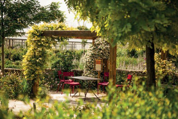 Terrasse du Jardin du MIP