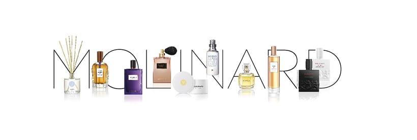 Excursion en terre de parfums