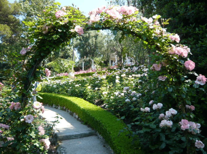 La Roseraie de La Villa Ephrussi de Rothschild