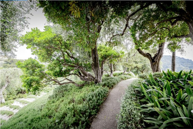 Le Jardin Anglo-Provençal d' Ephrussi