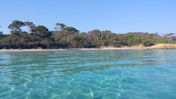 L'île de Porquerolles