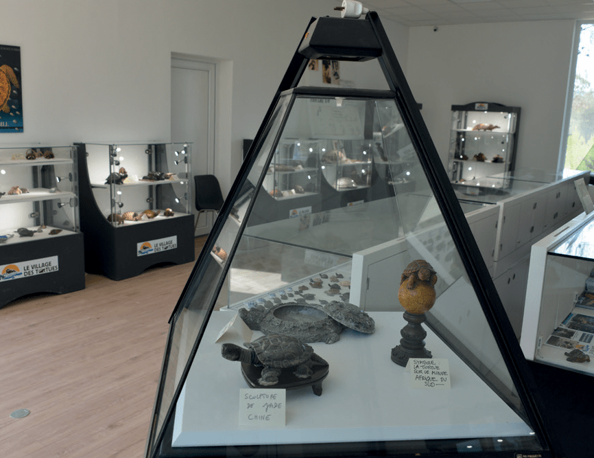 Musée du village des tortues