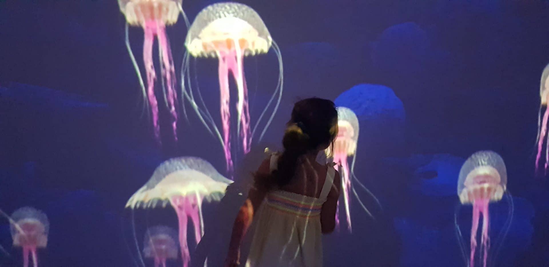 Exposition Immersion au Musée