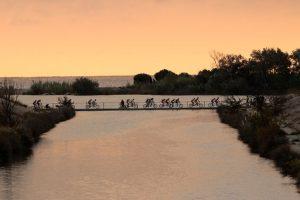 Roc d'Azur - Mountainbike-Rennen