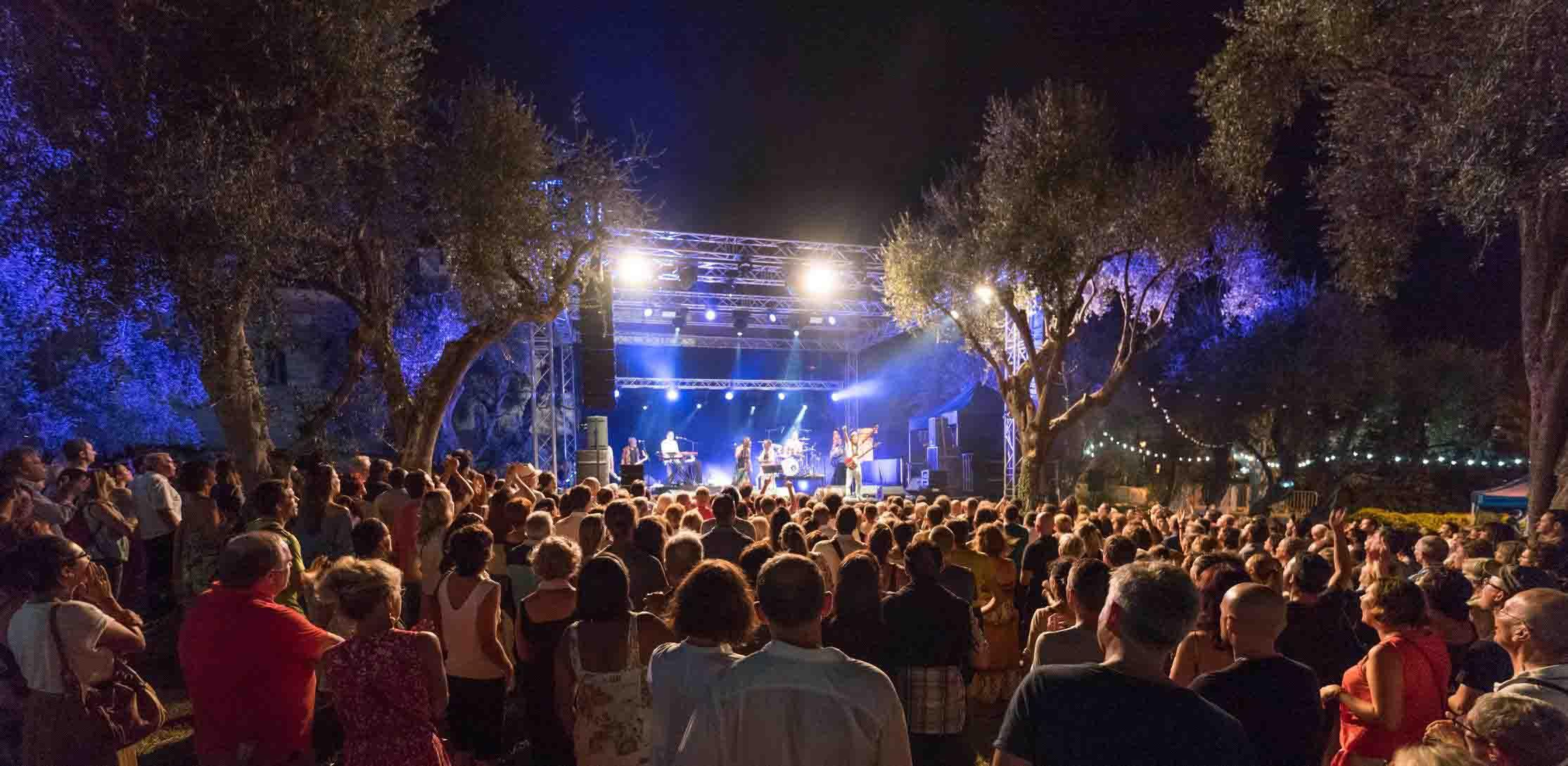 Concert Festival Nuits Guitares